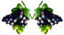 divider-grapes